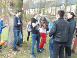 Projekt Handgreiflich Klasse 7c (25)